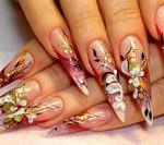 рисунки на ногтях в домашних условиях для начинающих