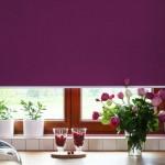 сочетание цветов в интерьере кухни картинки